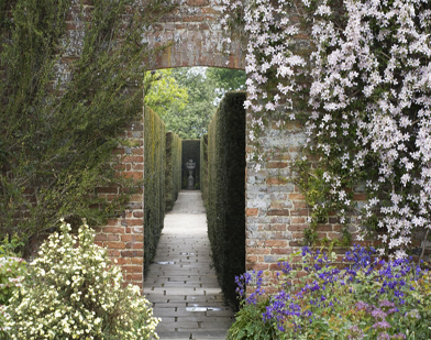 Yew-Walk-Sissinghurst-Cast
