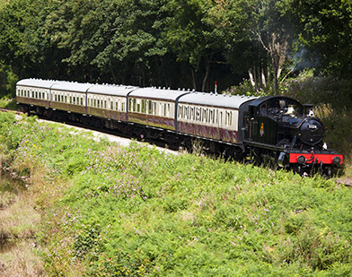 VB34130539---steam-train,-Devon
